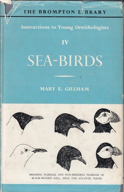 Instructions to Young Ornithologists, IV: Sea Birds