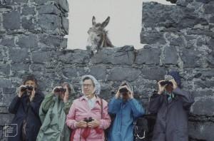 6th birdwatcher in rain. Near Gilbert House, 1979