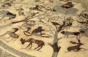 Animal mosaic. Furthest south of Romans. Volubilis, Morocco, 1970s