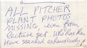 Slides would be in high demand and Mary would often loan them to other tutors or researchers. We occasionally find notes like this wondering whether she has placed slides elsewhere or not had them back from someone.